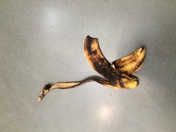Banan instillasjon av Adriana Lara. Foto Henning Høholt