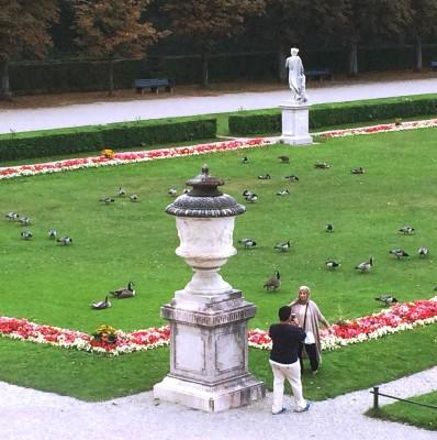 Nymphenburg. Honestly too many Canadagues. Foto Henning Høholt