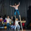 Cirkus Cirkör