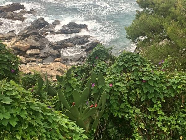Costa Brava Idyl by the Sea.